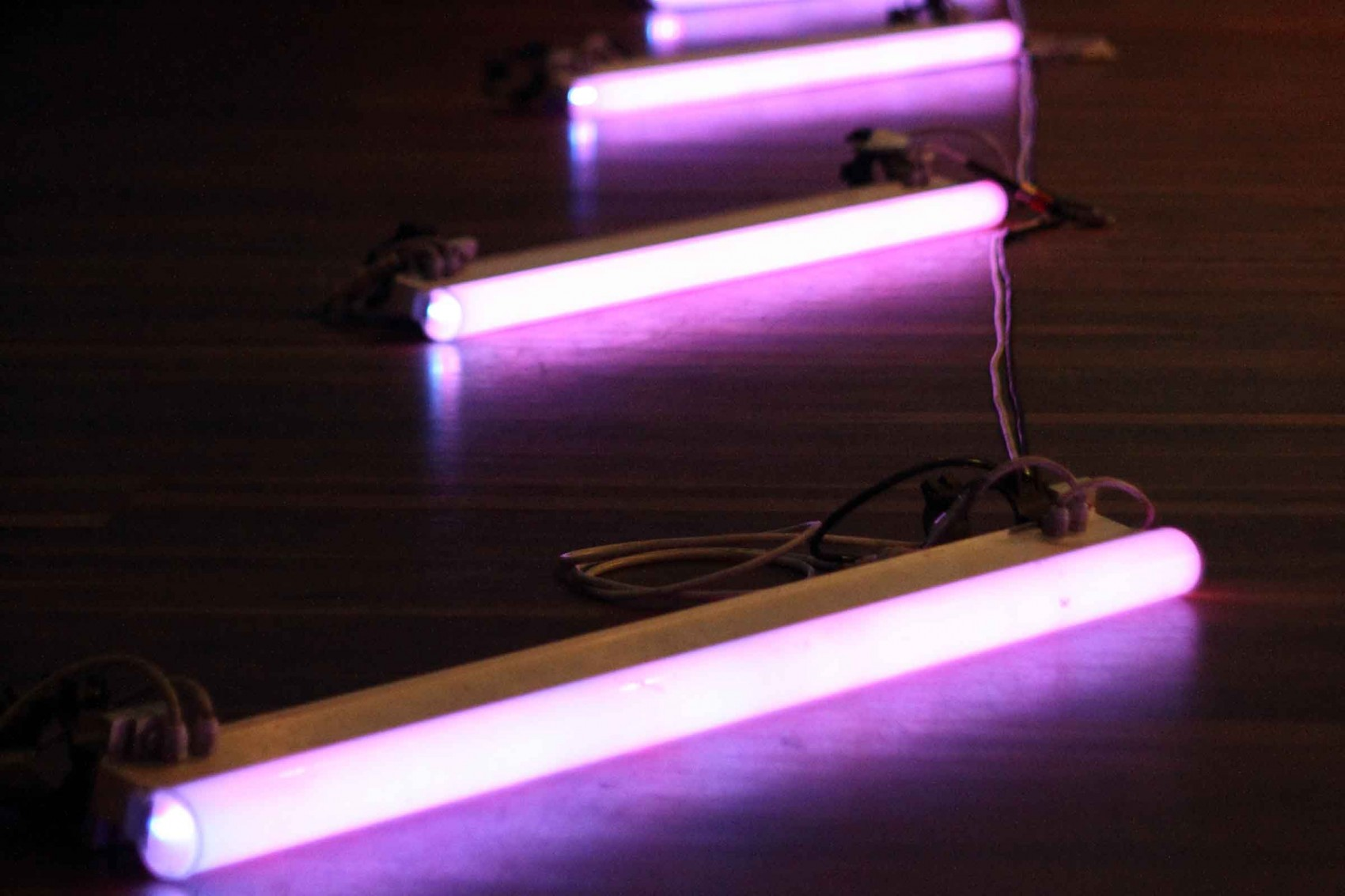 Four fluorescent pink tube lights in a row on a wooden floor